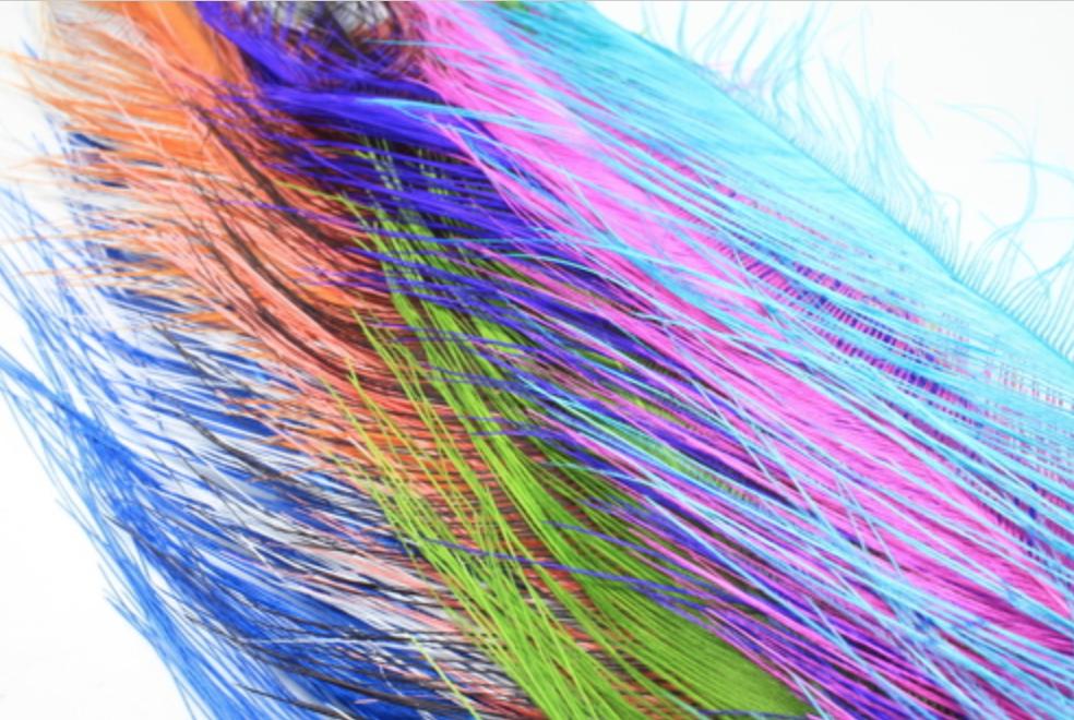 Rhea Feathers - Blue